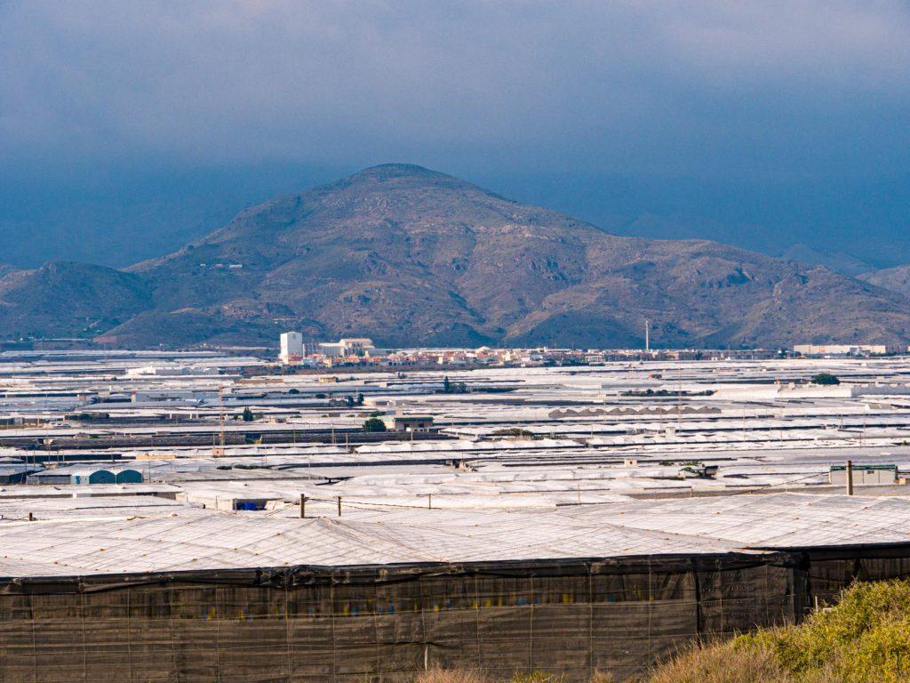 Les champs de plastique