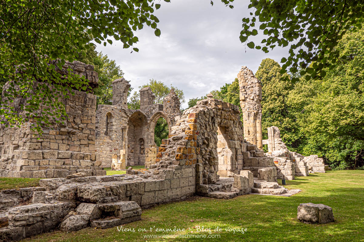 Ruines de l'abbaye de Montfaucon